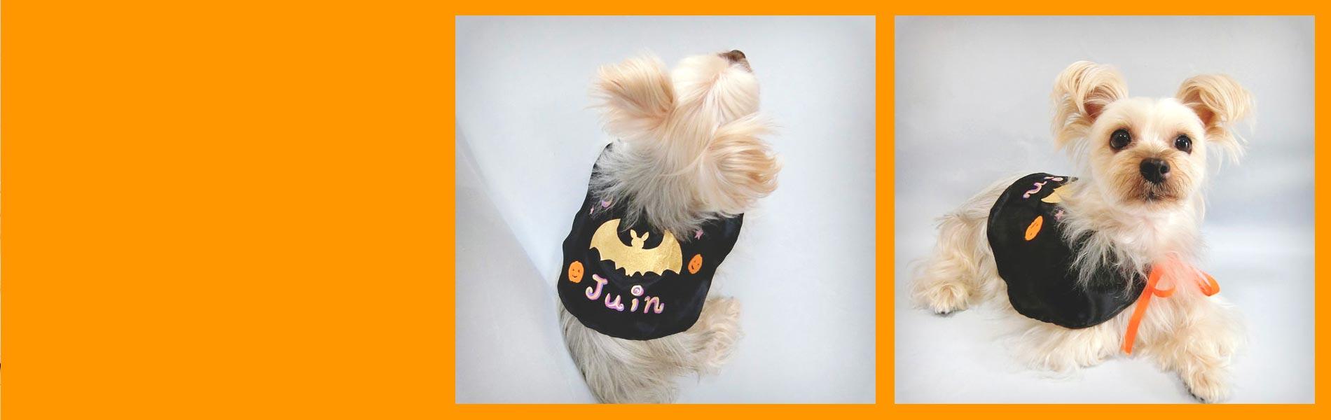 ハロウィンの犬服マント
